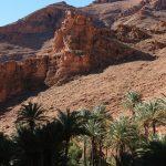 Une palmeraie dans le Haut Atlas